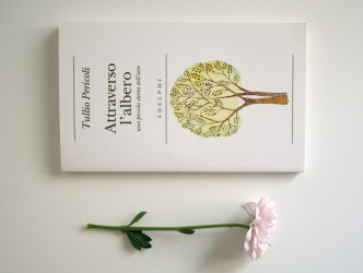readings book flower tree