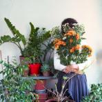 flower nursery
